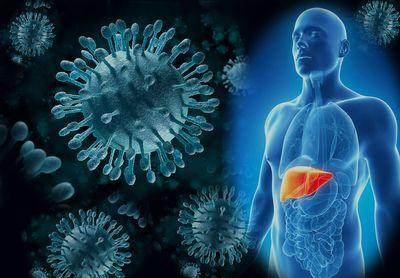 Вирусные гепатиты, что это?