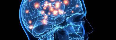Энцефалопатия головного мозга: причины и стадии заболевания